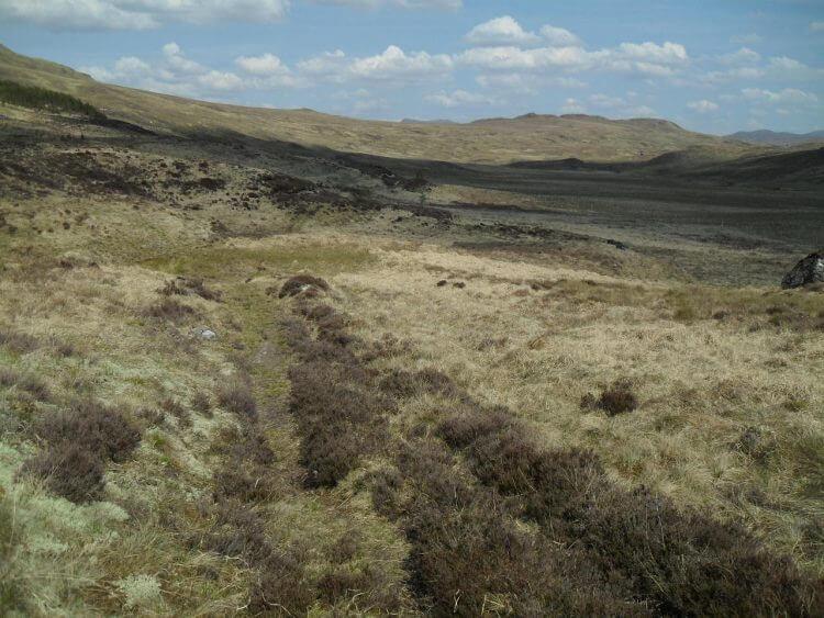 Jetzt kommt ein Stück Track. Ich überhole einige Wanderer, muß ca 200m durch morastiges Gelände schieben und zwei Gatter überklettern