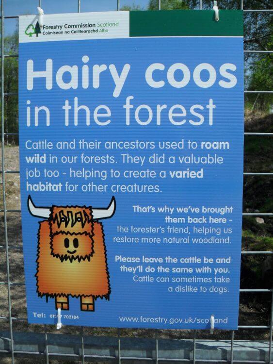 Ein Schild am Ende des Waldes gibt Aufschluß