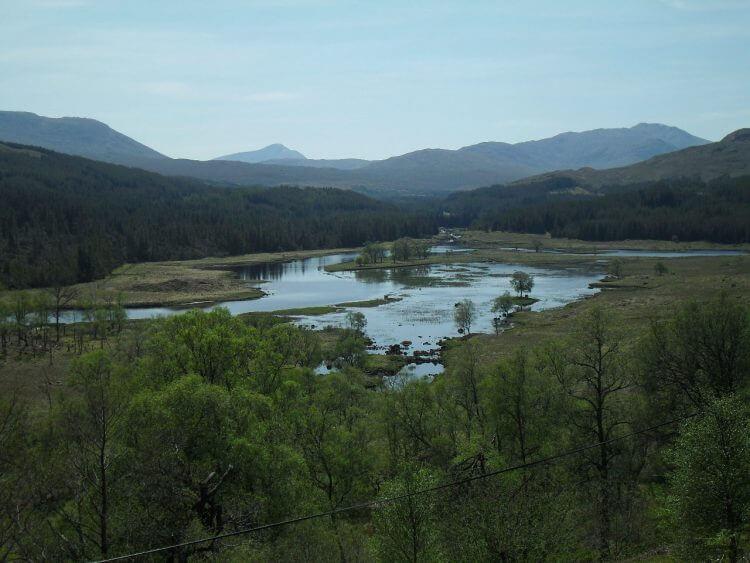 Am Beginn von Loch Poulary endet der Wald....