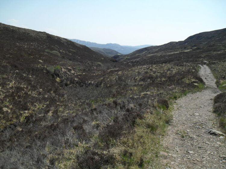 Der Weg nach Boreraig ist erst ein gut fahrbarer Feldweg, dann, als es in ein umzäuntes Wiederaufforstungs-Gebiet rein geht, ein komplett fahrbarer Singletrail, der mich wieder an die Küste führt