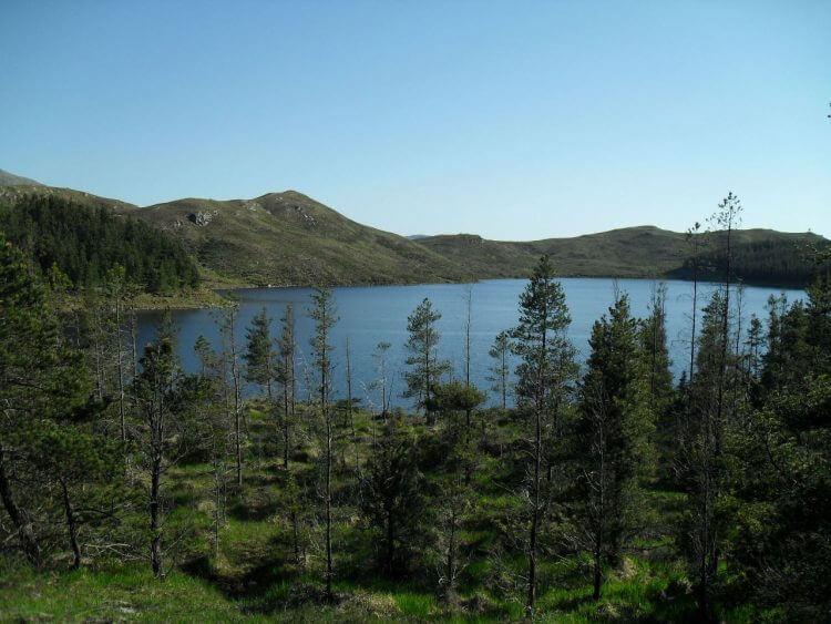 Loch an Iasaich