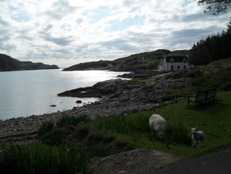 "<small>""..it's there a bonnie lassie lives, the lass that I lue best...""</small> <br/><br/> Inverkirkaig Bay"